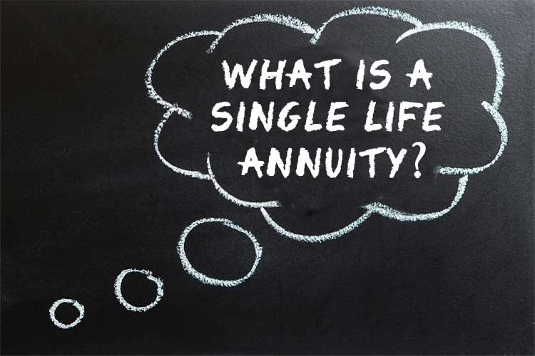 what is a single life annuity